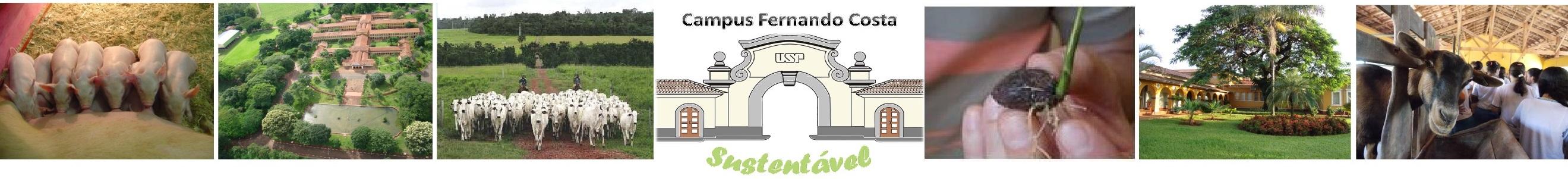 """Campus Fernando Costa """"Sustentável"""""""